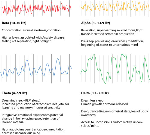 Brain Waves Brain Wave Chart «